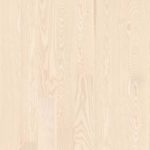 Ash-Polar_plank-138
