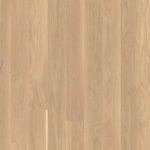 Oak Andante white_plank 138